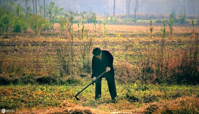 农民注意:土地征收补偿分为这三笔,算好了别让人给蒙了